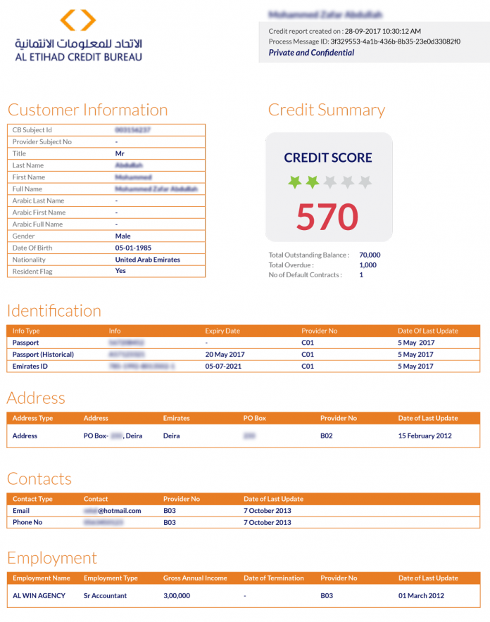 Al etihad credit bureau report mymoneysouq financial blog for Bureau report
